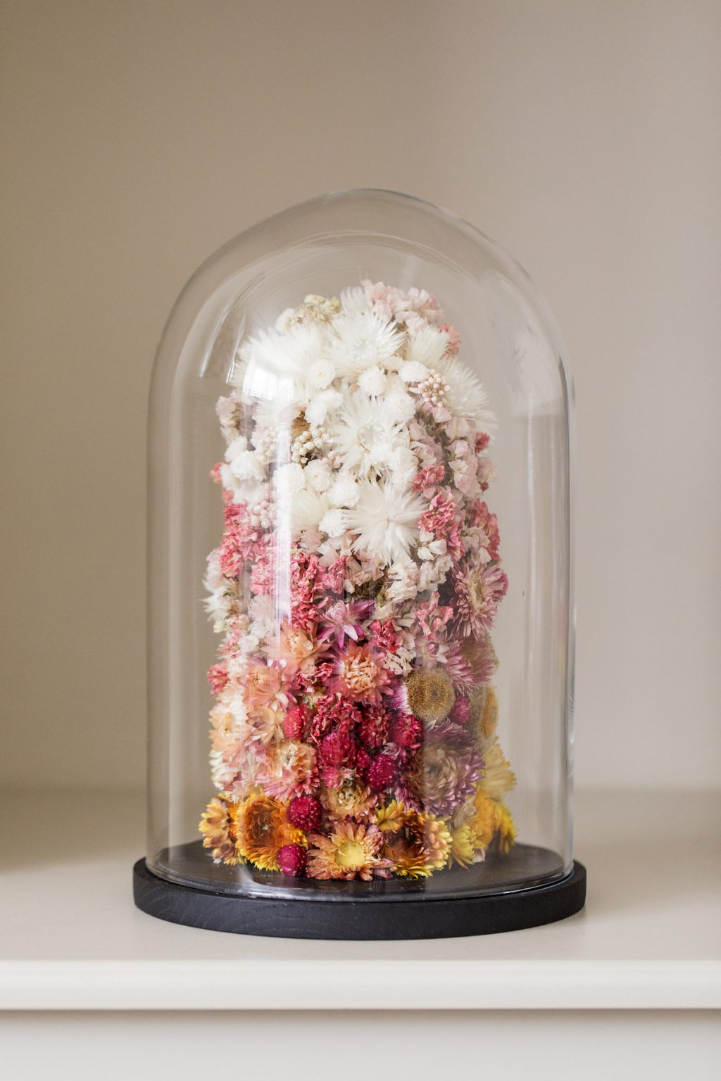 Indeco Flowers Dried Flower Dome Cloche Bell Jar Royal Ombre